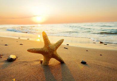 Giải mã giấc mơ thấy biển