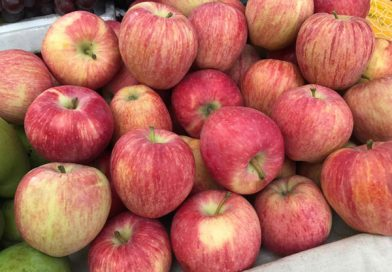 Đánh đề con gì chắc ăn nhất khi nằm mơ thấy quả táo