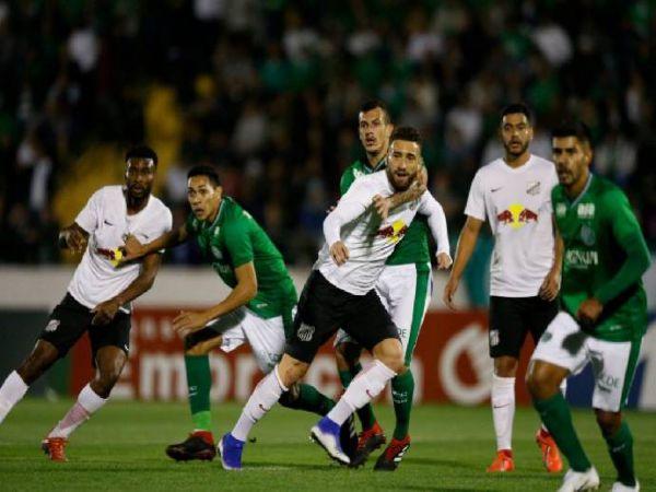 Soi kèo Botafogo vs Bragantino, 06h00 ngày 17/11 - VĐQG Brazil